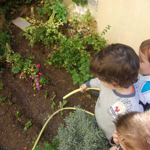 κήπος-1024x679